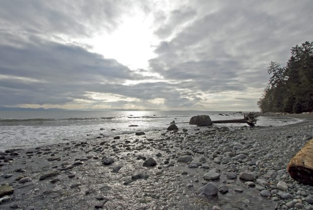 Bear Beach off the Juan de Fuca Marine Trail.