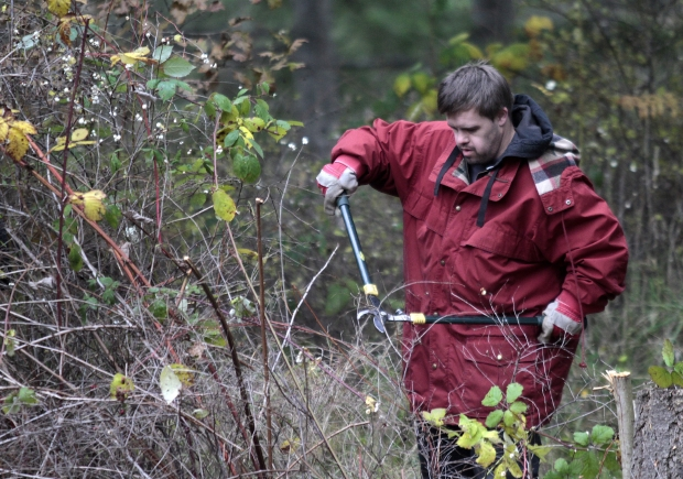 Darrin Schebek cuts brush at the Horticulture Centre of Pacific on November  16, 2011