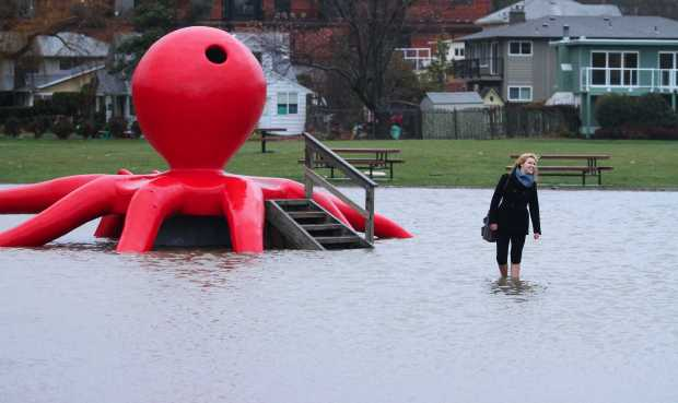 Mount Doug Student Clare MacGregor enjoys the flooding in Gyro Park on Thursday, Nov.24, 2011.