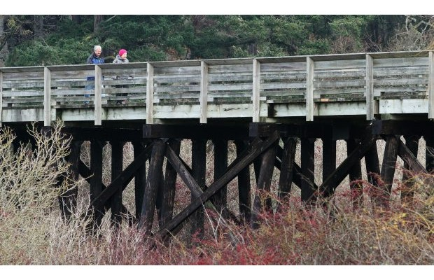 People enjoy a walk along the Lochside Regional Trail. Saanich aims to make its parks accessible to people of all abilities.