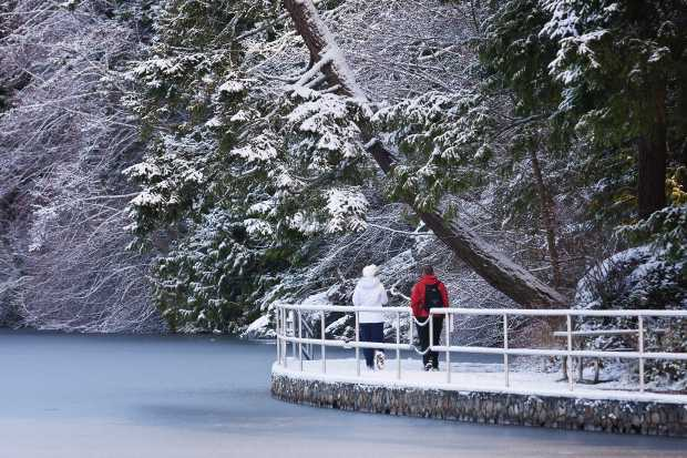 Walking in the snow at Thetis Lake on Jan. 17, 2012.