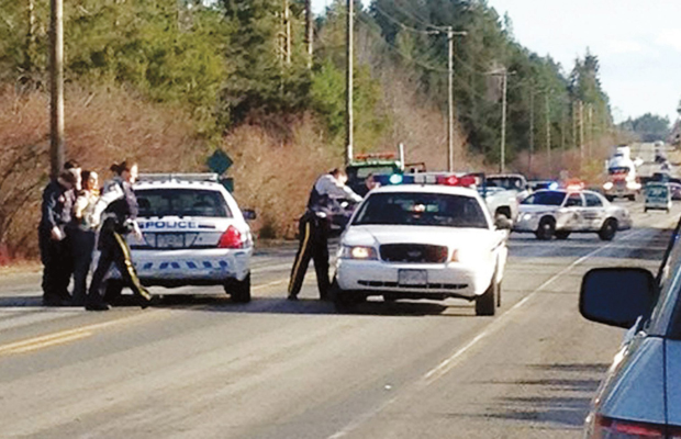 Police arrest a man and a woman after they crashed their car along the Alberni Highway near Coombs midday Wednesday.