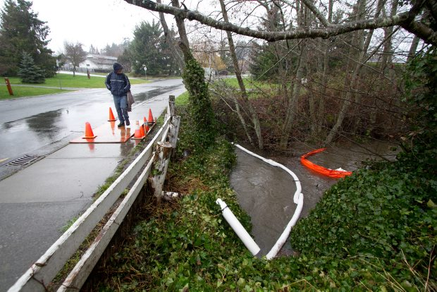 A boom was placed across polluted Colquitz Creek at Vanalman Avenue Friday.