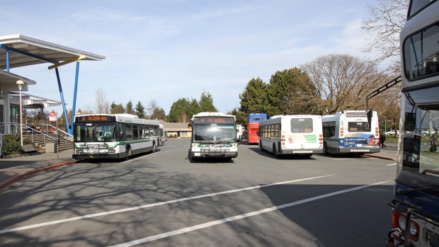 B.C. Transit buses wait for passengers at the University of Victoria exchange.