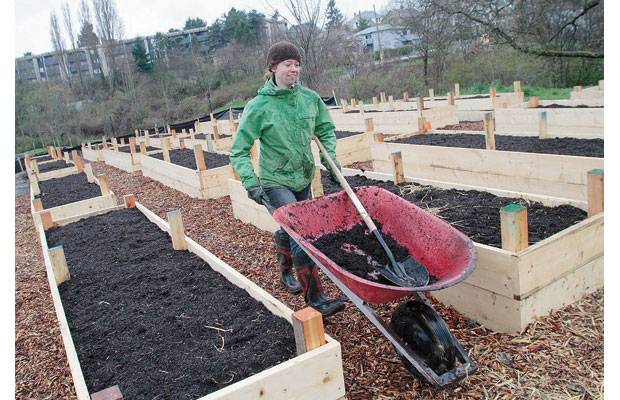 Jill Dalton, Urban Agriculture Coordinator amongst some of the newly built 20+ plot community garden in Cecelia Ravine Park.