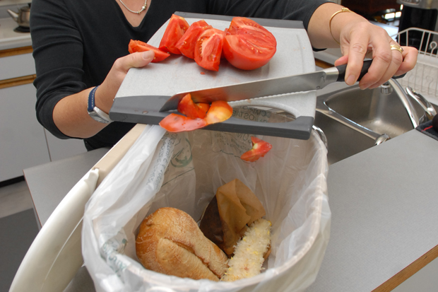Kitchen scraps will be banned from the Hartland landfill in less than three years, giving regional municipalities time to sort out how - or if - they should pick up organic waste along with garbage.