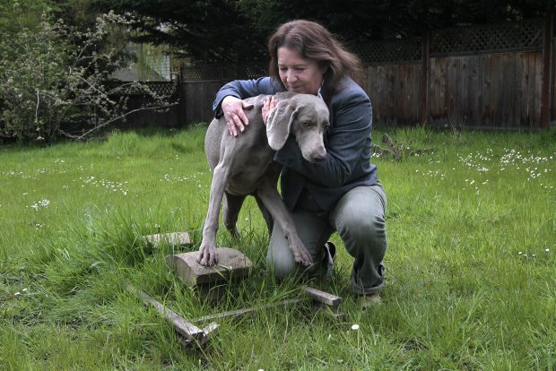 Alison Gunn with Soleil at the grave of her two dogs that died of a raccoon roundworm infestation.