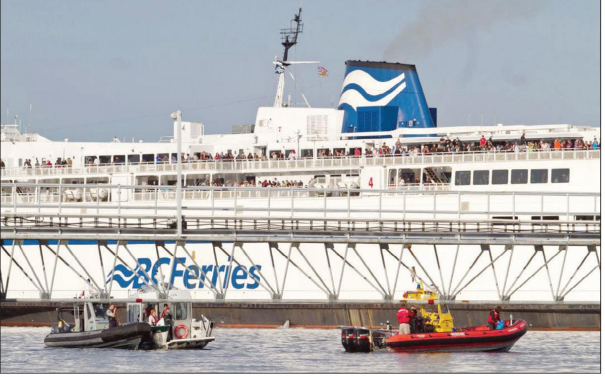 Despite the Queen of New Westminster undergoing repairs over the Victoria Day long weekend, B.C. Ferries says vehicle and passenger traffic was up over last year.