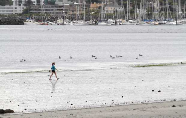 A woman walks along Willows Beach during a very low tide on Tuesday. Victoria is experiencing some of its lowest tides of the year this week.