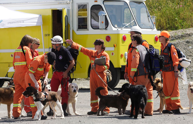 Members of Canadian Search and Disaster Dogs Association check a building during an earthquake simulation on Friday. The three-day search-and-rescue exercise is the first the group has held in Victoria.