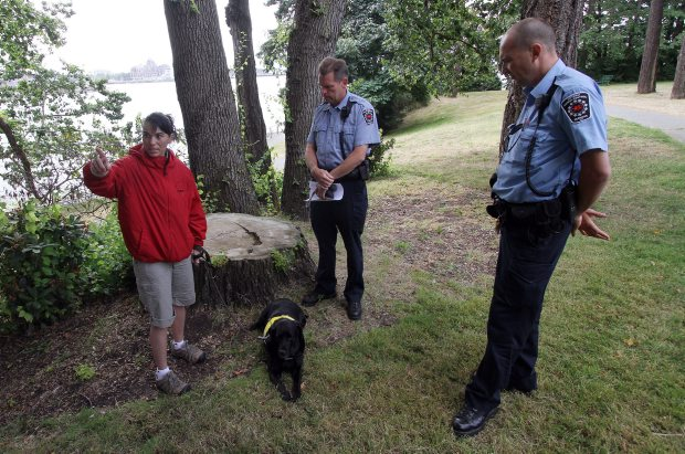 Lise Anthony with her dog India talk to Animal Control Officers Ian Fraser, middle, and Adam Sheffield at Barnard Park