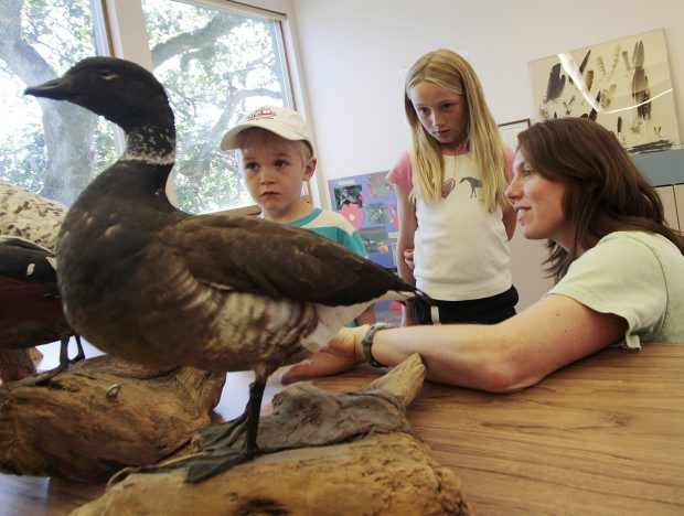 Renee Cenerini, left, with Rowen Closs-Riedel, 6, and Georgia Knight, 8 at a Birds of a Feather event at Swan Lake Nature House.